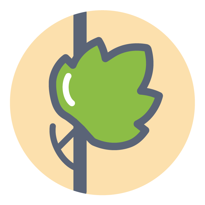 Picto-plant.png